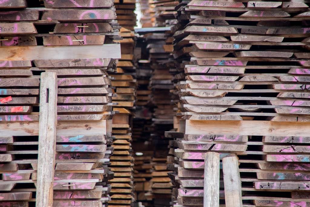 ツバキラボ 広葉樹 木材 販売 カネモク